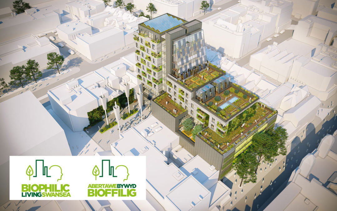 Biophilic Living Swansea – Pre Application Consultation Now Underway